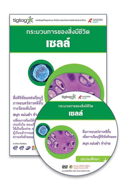 DVD-Rom Tigtag เซลล์