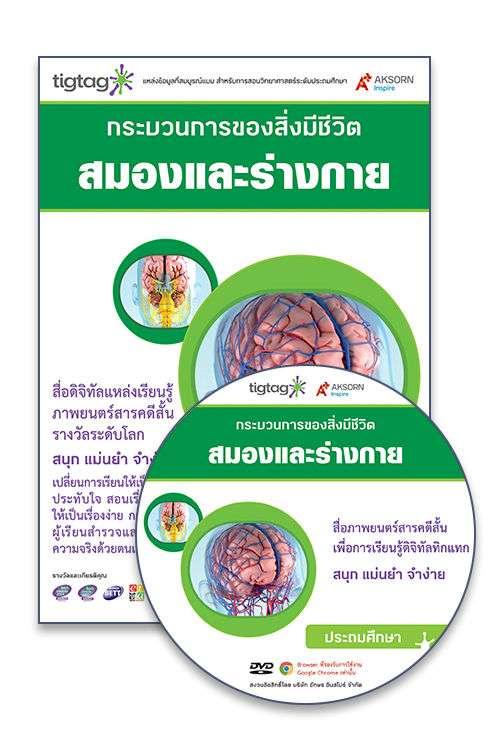 DVD-Rom Tigtag สมองและร่างกาย