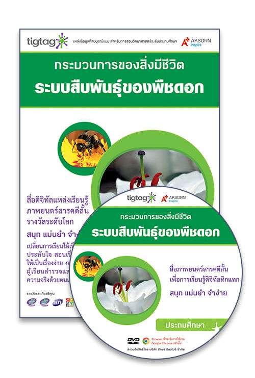 DVD-Rom Tigtag ระบบสืบพันธุ์ของพืชดอก