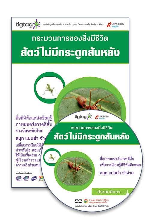DVD-Rom Tigtag สัตว์ไม่มีกระดูกสันหลัง