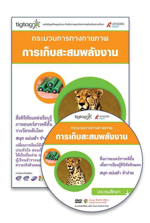 DVD-Rom Tigtag การเก็บสะสมพลังงาน