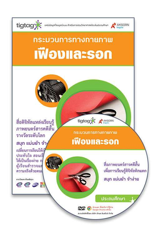 DVD-Rom Tigtag เฟืองและรอก