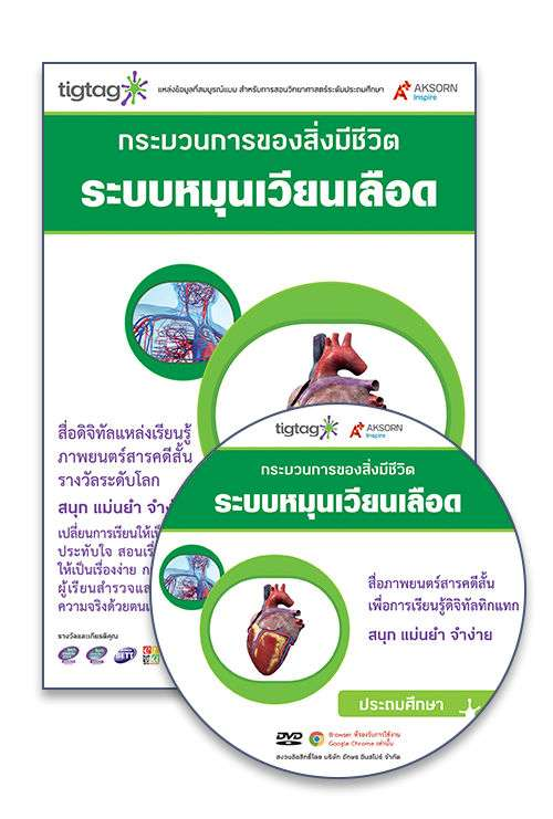 DVD-Rom Tigtag ระบบหมุนเวียนเลือด