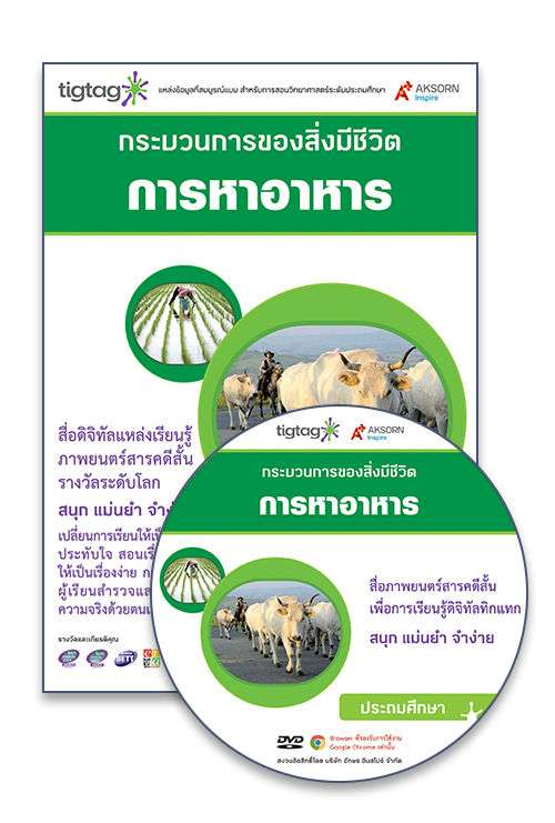 DVD-Rom Tigtag การหาอาหาร