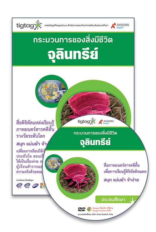 DVD-Rom Tigtag จุลินทรีย์